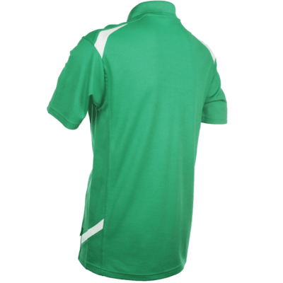 QD34 Multi-Tone Dri-Fit Polo T-Shirts 2018-19 thumbnail green back
