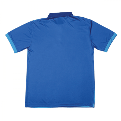 QD44 Multi-Tone Dri-Fit Polo T-Shirts 2018-19 thumbnail royal back