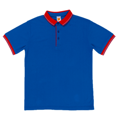 HC20 Multi-Tone Cotton Polo T-Shirts 2018-19 thumbnail royal