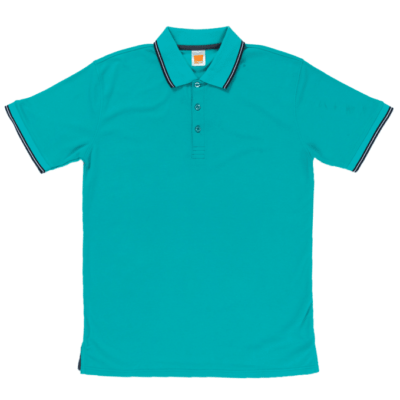 QD53 Multi-Tone Dri-Fit Polo T-Shirts 2018-19 thumbnail emerald