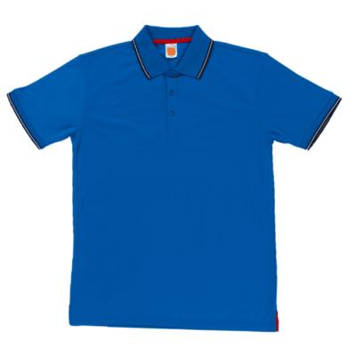 QD53 Multi-Tone Dri-Fit Polo T-Shirts 2018-19 thumbnail royal