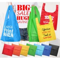 Lightweight Foldable Nylon Tote Bag 2018-19 model 1