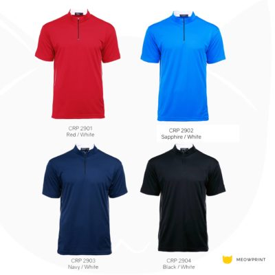 CRP2900 Paragon Polo T-Shirts 2019-20 catalogue