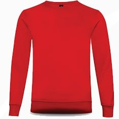 BEAM Polyester Crewneck Sweatshirt 2019-20 crimson red